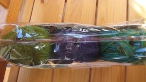 入っている色はMistelzweig, Ballerina, Skrabaus です。緑系、紫,そして緑、ブルーの段染めかな?